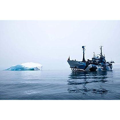 Sea Shepherd : 40 years