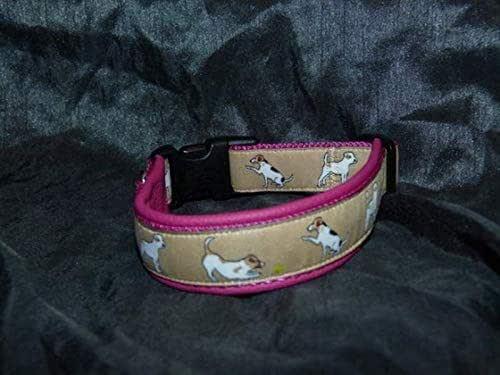 Halsband messen Jack Russell Terrier | Halsumfang vom Hund