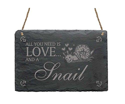 Schiefertafel Schild « All you need is LOVE and a SNAIL » mit SCHNECKEN MOTIV 02 Heim Haus Garten Dekoschild Dekoration