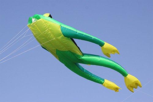 Preisvergleich Produktbild Wolkenstürmer Frosch Fritz the frog