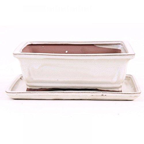 Bonsai - Schale mit Untersetzer eckig 21,5 x 16,5 x 7,5 cm, Creme 23117