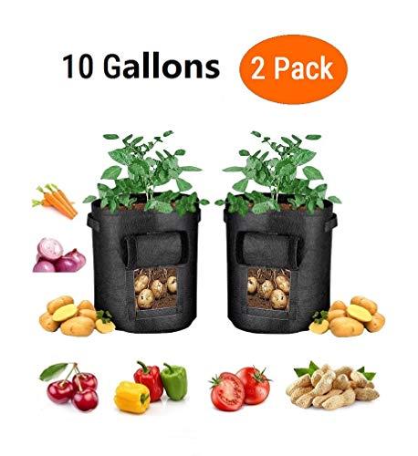 Pflanztasche für Tomaten