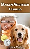 #1: Golden Retriever Training: The Complete Guide to Training the Best Dog Ever