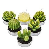 LA BELLEFÉE Kerzen Kaktus Teelicht Kerzen Sukkulenten Kerzen rauchfreie Kerzen für Arty Wedding Spa Home Dekoration Geschenke-6er Set
