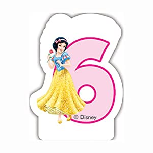 Unique Party Partido Ênico Disney Princess y Animales sexta Vela de cumpleaños