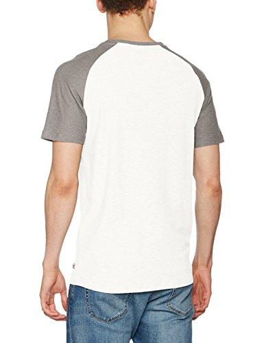 JACK & JONES Herren T-Shirt Jornew Stan Tee Ss Crew Neck Mehrfarbig (Cloud Dancer Detail:LGM SLEEVE - Slim)