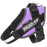 JULIUS-K9   IDC-Powerharness   Size: 0   Purple by Julius-K9