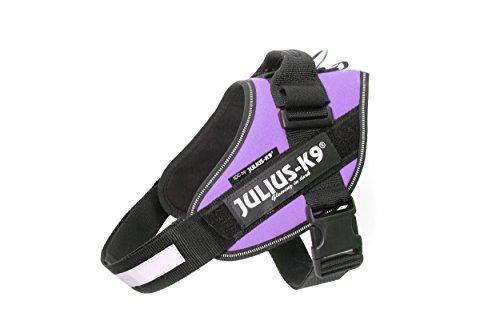 julius-k9-16idc-pr-0-idc-powergeschirr-grosse-0-lila