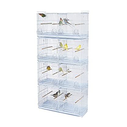 Kookaburra Cages Walnut - X4 Double Wire Breeding Cage - For Cockatiel Small Parakeet Budgie Canary Finch ECT 1