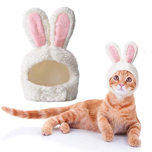 BERYLX Disfraz de Pascua para Gato