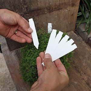 100 Stück Etiketten - Stecketiketten - Pflanzenetiketten 120x17mm