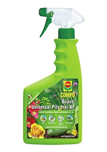 Compo Duaxo 73130 Spray Universale Anti-funghi per le Piante, 750ml