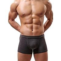 Sannysis® Hombres Ropa Interior; Hombres Calzoncillos (Gris, L)