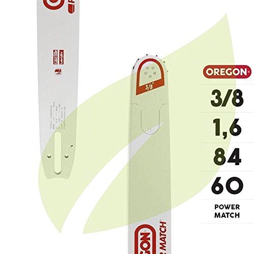 Guide oregon nez remplacable 60CM/24 243RNDD025