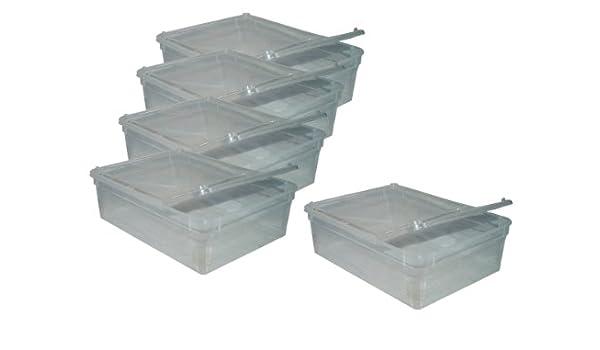 Namiba Terra 20434 Lot de 5 boîtes d incubation et d exposition en magasin  Taille M-L 25 x 19 x 7,5 cm  Amazon.fr  Animalerie 4a431dc794d