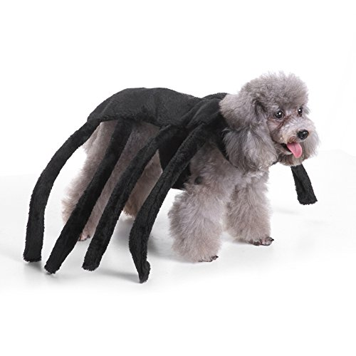 monicanine Pet Hund Puppy Cute Spider Hundegeschirr Kostüm Kleidung Apparel Halloween Fancy (Kostüme Hund Spider)