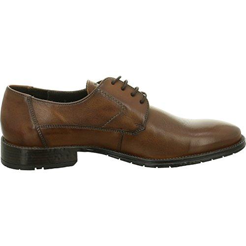 Lloyd  2656102, Chaussures de ville à lacets pour homme Marron