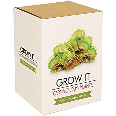 Gift Republic GR200010 - Kit de cultivo en casa (de empuje), color verde
