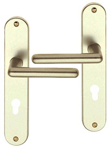 Poignée de porte d'entrée design en Aluminium champagne sur plaque Clé I entraxe 195 mm, TIGNES