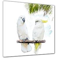 Fototapete Wasserfarbenbild Kakadus