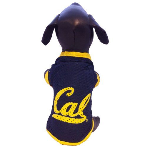 All Star Dogs NCAA California Golden Bears Athletic Mesh Dog Jersey, Unisex-Erwachsene, Team Color, Small