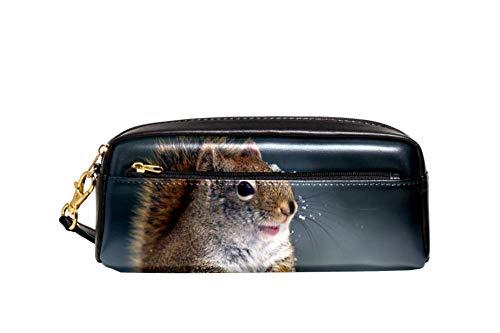 Desheze Eichhörnchen Federmäppchen Doppelreißverschluss Oxford Leder große Kapazität männliche und Junge Kind Studenten Bleistiftbeutel Federmäppchen Schreibwaren Veranstalter 20.5x5x8.5cm