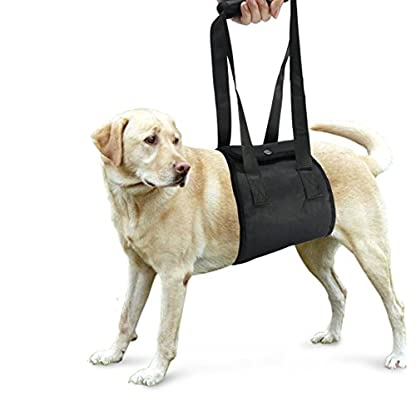 Dog Harness, S7 SEVEN Large Dog Harness Support Sling Helps Dogs With Weak Legs Stand Up, Walk, Climb Stairs & Get into… 1
