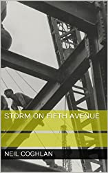 Storm on Fifth Avenue