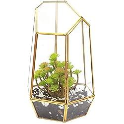Maceta terrario geométrico de cristal de cobre para plantas de decoración