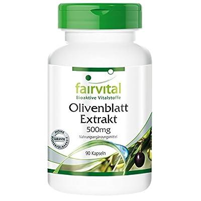 Fairvital - Olive Leaf Extract 500mg (Olea Europaea, 20% Oleuropein) - Vegetarian - 90 Capsules by fairvital