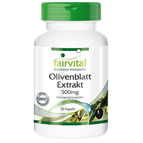 Olivenblatt-Extrakt 500mg - GROSSPACKUNG für 3 Monate - VEGAN - HOCHDOSIERT - 90 Kapseln - standardisiert auf 20% Oleuropein