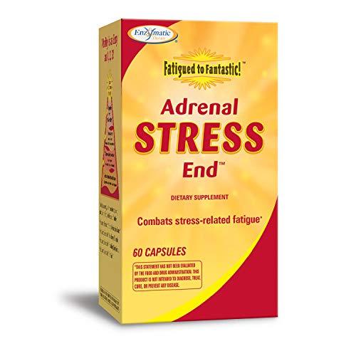 Therapie 60 Kapseln (Enzymatische Therapie zu fantastischen Nebenniere Stress-End ermüdet, 60 Kapseln)