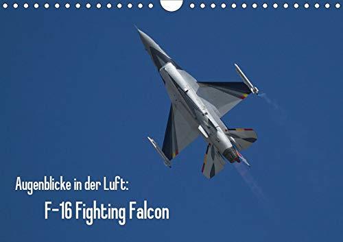 Augenblicke in der Luft: F-16 Fighting Falcon (Wandkalender gebraucht kaufen  Wird an jeden Ort in Deutschland