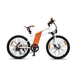 Sassonia-Racing Bike R5 Deluxe, Motore da 240 W Fino a 25 km/h, 24 Pollici, Cambio Shimano a 7 Marce, Pneumatici Kenda…