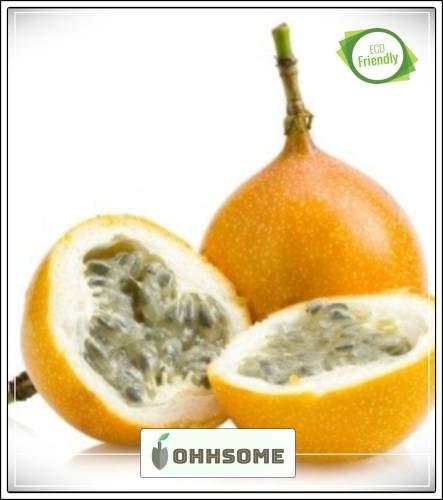 Pinkdose Fruchtsamen: Mixed Maracuja - Exotische Samen schnell Fruchtpflanzensamen Fruchtsamen Gemüsegarten-Pack-Seed