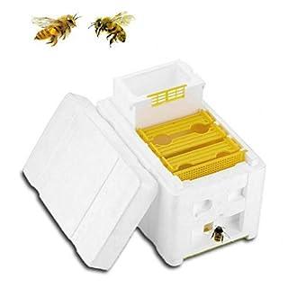 OPALLEY Abeille éleveuse Ruches Caisses Nid D'Abeilles Abeilles Pollinisatrices pour Abeilles Accouplement Outils Apicoles Apiculteurs Doivent Boîte à Outils pour L'apiculture