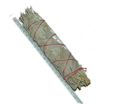 Großer weißer feiner Salbei-Stab /BuffaloSage, Indiansage (8.5-9Inch, 22cm lang, ~70gr.) von Native-Spirit.eu -- Wands, Smudge Stick XL -