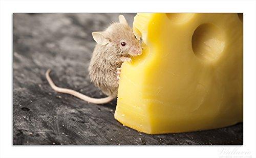 Wallario Herdabdeckplatte / Spritzschutz aus Glas, 1-teilig, 90x52cm, für Ceran- und Induktionsherde, Süße Maus knabbert an einem Käse in der Küche