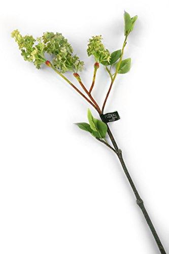 Floral Elegance F084GL - Tige artificielle de Lilas vert de 76 cm