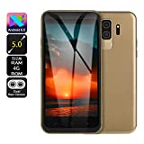 Fulltime E-Gadget Neue Art Smartphone 5,0 Zoll Doppel-HDCamera Smartphone Android 6.0 IPS-Full Screen, 512M RAM + 4G ROM, Dual-SIM, GSM/WCDMA-Touch Screen WiFi Bluetooth GPS 3G Anruf-Handy (Gold)
