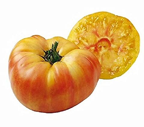 Lot de 10 Graines - Tomates Jaune ananas - gros fruits de 500 grammes variete ancienne fruit legume