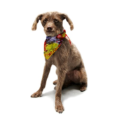 kess-inhouse-claire-day-southern-comfort-pet-bandana-and-scarf-28-by-20-by-20-inch