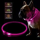 KABB Collare per Cani a LED, Collare USB Lampeggiante Ricaricabile per Sicurezza di Notte, Collare Luminoso per Cani Regolabile Resistente all'Acqua - Taglia Unica, Rosa