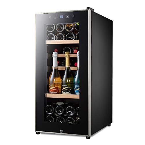 HYYQG Nevera Vino, Refrigerador Bebidas,Volumen