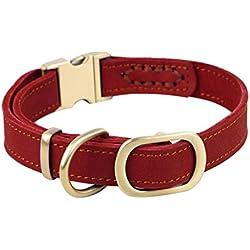 ZEEY Pet Collar de cuero para perros pulido, cuello ajustable de 30 a 43 cm y 2 cm de ancho, fácil de usar collar de hebilla Medio / perros pequeños con un fuerte gancho de la correa del perro (rojo)
