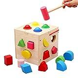 Maybesky Pädagogisches Spielzeug Siebzehn Loch Knocking Ball Form gepaart mit Kinder Früherziehung Spielzeug für Kleinkind Jungen Mädchen Alter 2 + Geburtstagsgeschenk für Jungen Mädchen