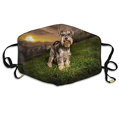 Outdoor Mouth Mask with Design, Reusable Half Face Anti-dust Mask, Unisex Pet Dogs Sunrises and Sunsets Grass Schnauzer Mouth Face Masks Women Cool Motorcycle Anti Dust Face Mouth Mask-Reusable Mens
