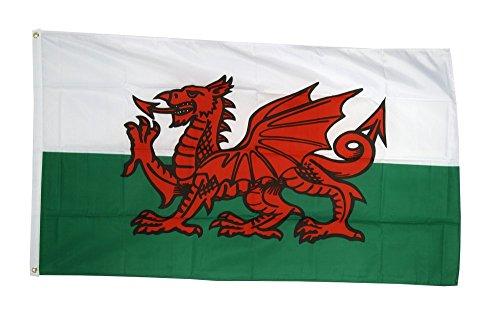 Flaggenfritze® Flagge Wales, walisische Flagge hissfertig mit Ösen + gratis Sticker 60 x 90 cm