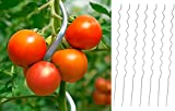 50 x Tomaten Spiralstab Alu 1