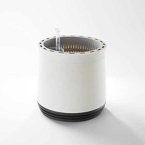 AIRY - Hochwirksame Luftreinigung mit Zimmerpflanzen in schneeweiß (Stone Grey - anthrazit)